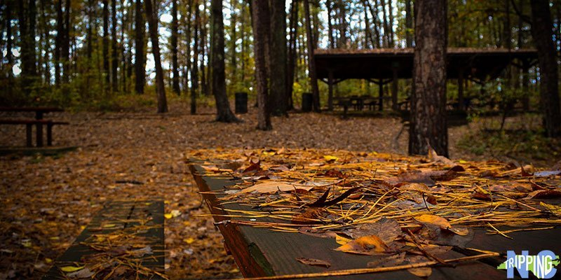 Outdoor Things to Do in Durham NC Whippoorwill Park in Durham NC