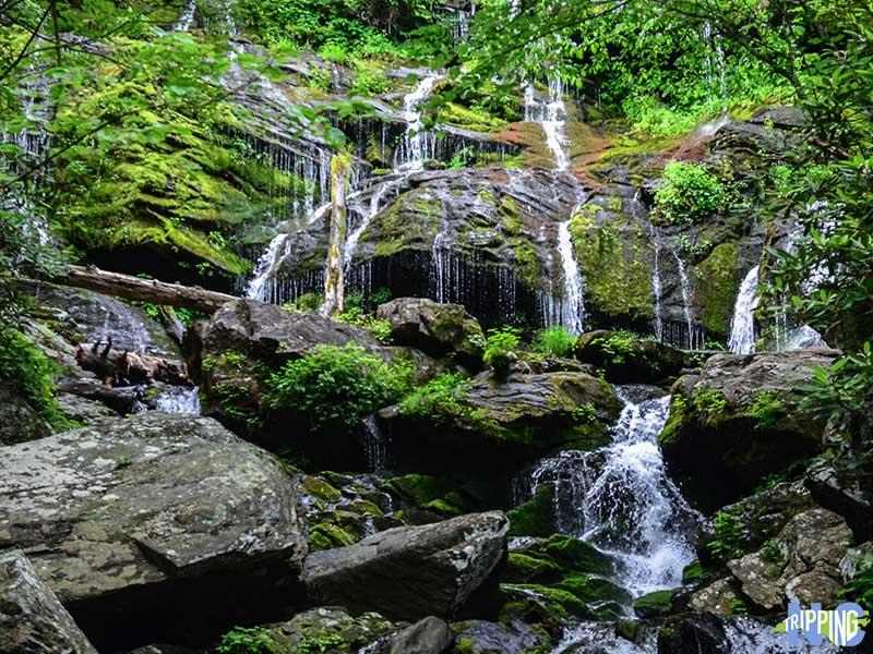 Things to Do Near Asheville nc Catawba Falls