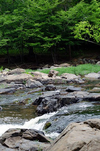 Buckquarter Creek