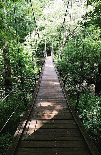 Cox Mountain Bridge Eno River State Park