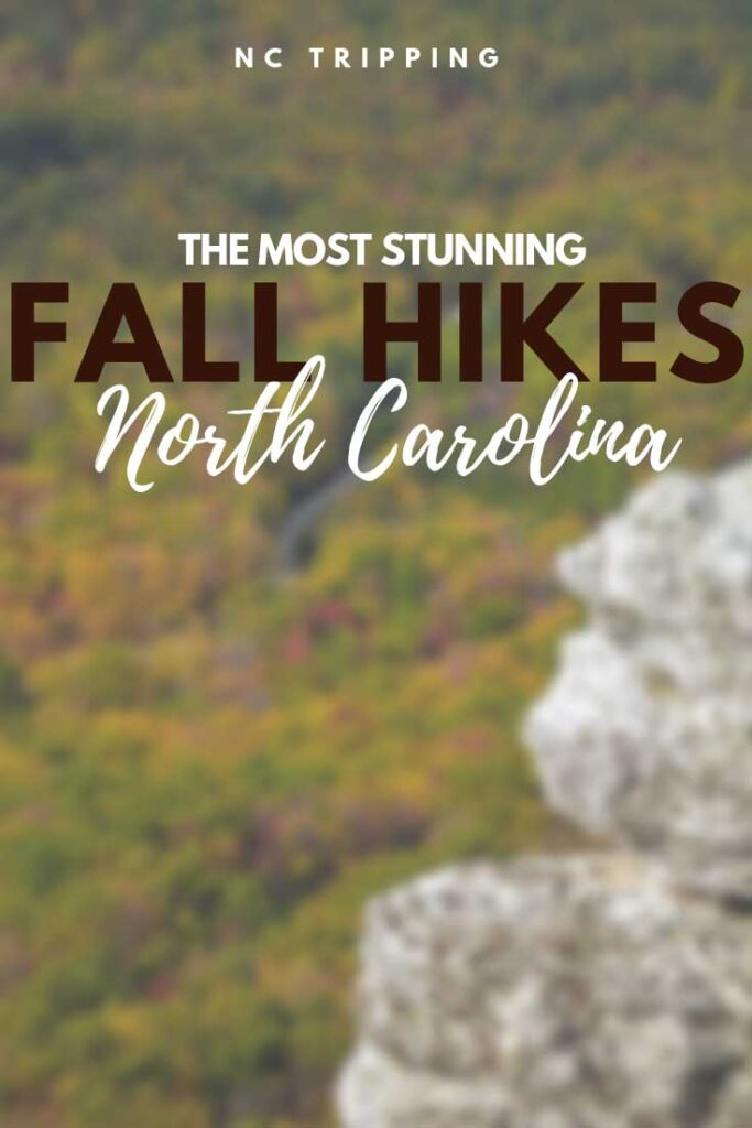 The Best Fall Hiking in North Carolina