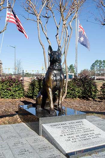 Fayetteville NC Constant Vigilance Image