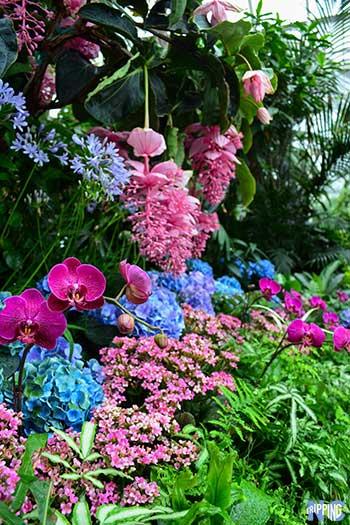 Spring Things to Do in North Carolina Travel Guide Biltmore Estate Image