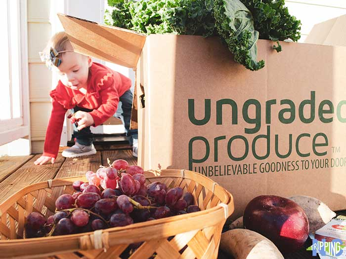 Ungraded Produce Hillsborough Founder Interview by NC Tripping Image
