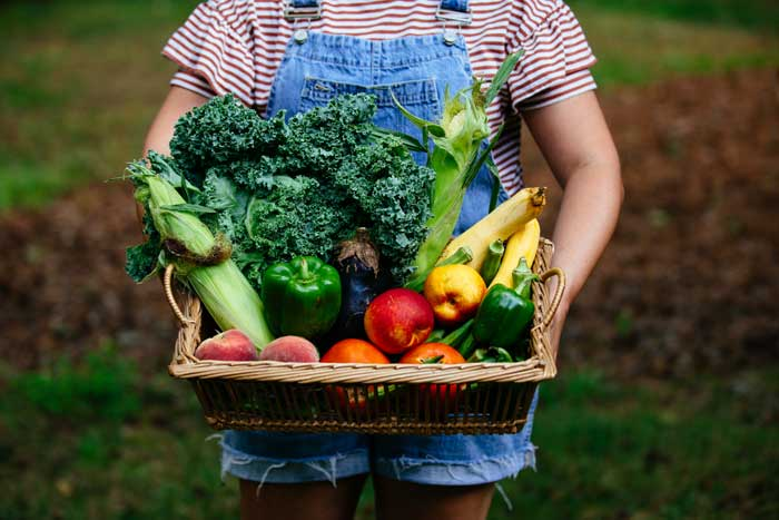 Ungraded Produce NC Founder Courtney Bell Interview with NC Tripping Image