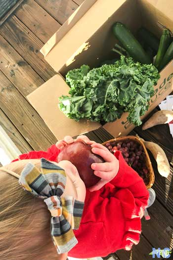 Ungraded Produce NC Founder Interview by NC Tripping Image