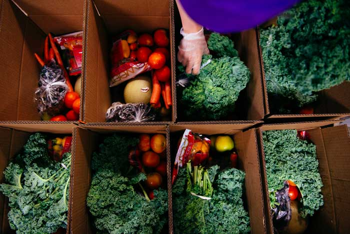 Ungraded Produce North Carolina Founder Interview by NC Tripping Image