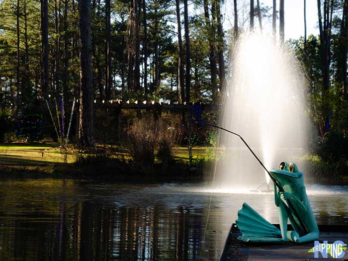 5 fun winter things to do in fayetteville nc north - Botanical garden fayetteville nc ...