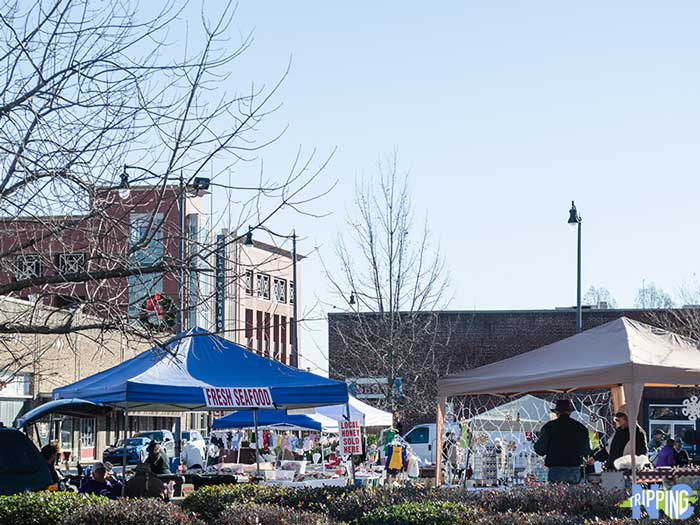 Winter Things to do in Fayetteville NC City Market at the Museum Image