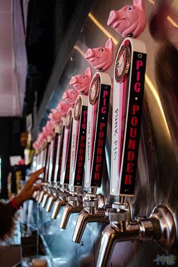 North Carolina Breweries Pig Pounder Greensboro NC Image