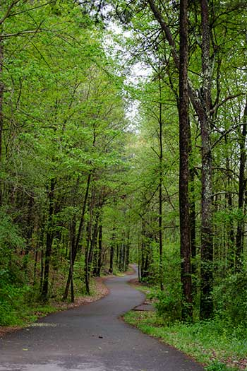 North Carolina Attractions Carolina Thread Trail  Broad River Greenway Trail Image