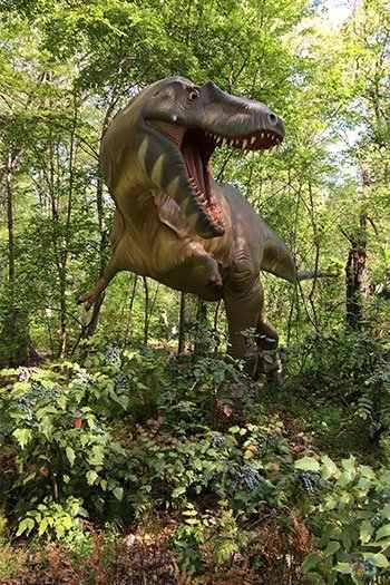 Durham Museum of Life and Science Dinosaur Trail Image