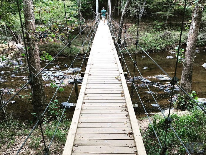 Things to Do in North Carolina Eno River State Park Cox Mountain Image