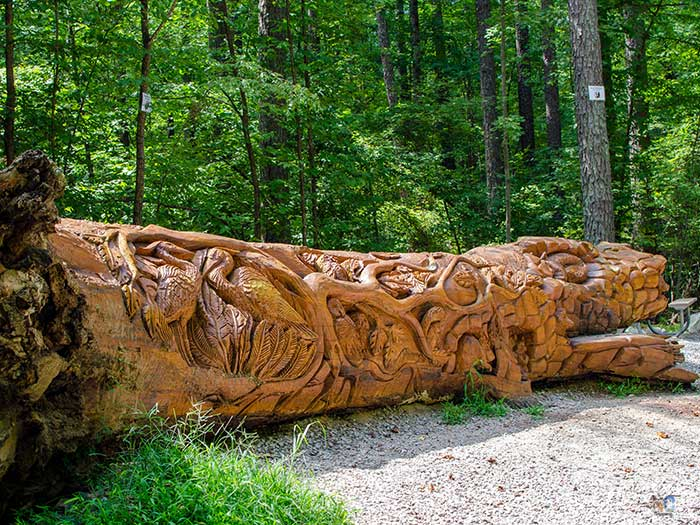Free Things to Do in Raleigh NC Umstead State Park Chainsaw Art Image
