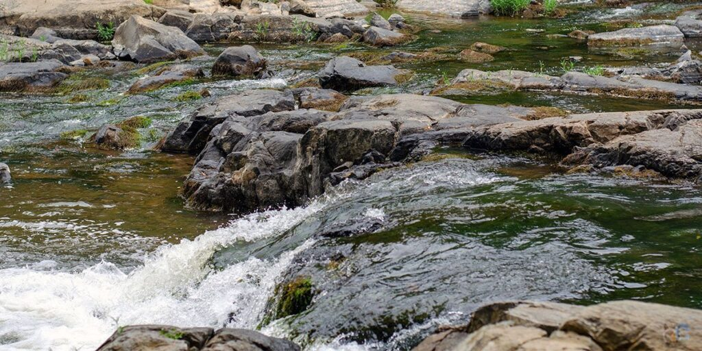 Eno River State Park Durham NC State Parks Featured Image