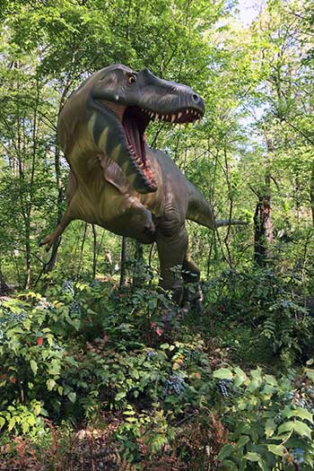 Durham NC Museum of Life and Science Dinosaur Trail Image