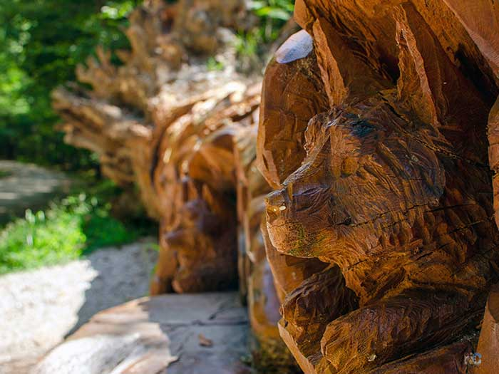 NC State Parks Raleigh NC Umstead Chainsaw Art Image