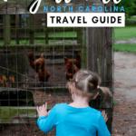 Fayeteville Travel Guide Pinterest Image 10 2