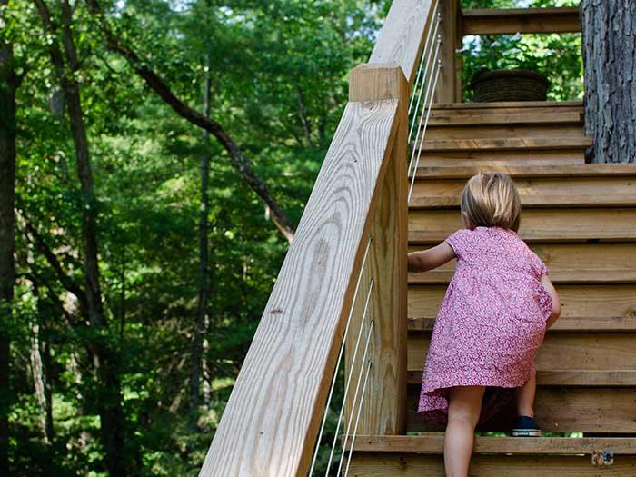 North Carolina Vacation Rentals near Asheville Fairview Blackberry Lodge Image