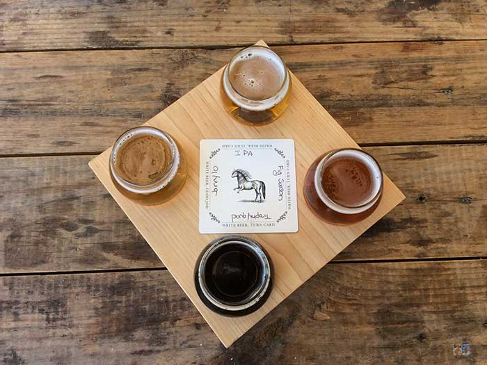 North Carolina Breweries Ponysaurus Durham Image