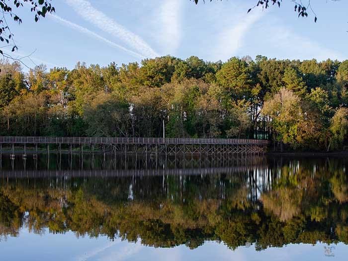 Wilson NC Lake Wilson Image