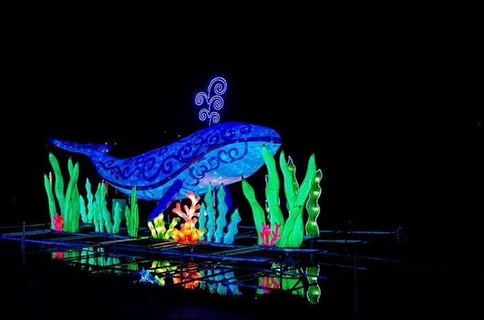 Chinese Lantern Festival Cary NC Image