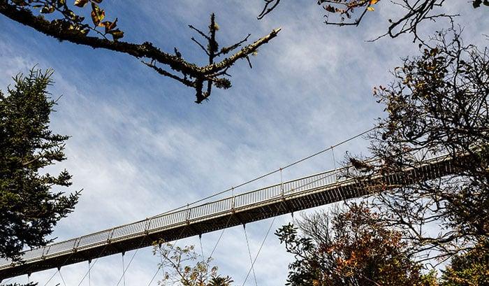 Grandfather Mountain Things to Do Mile High Swinging Bridge Image