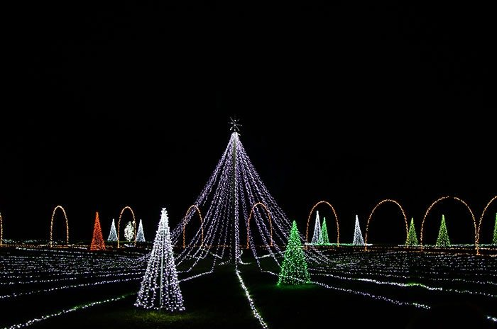 Mikes Farm Christmas Lights Image