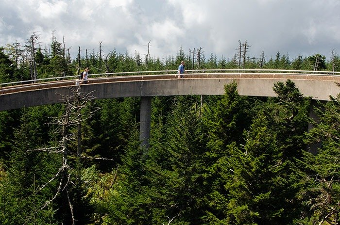 Clingmans Dome Observation Tower Ramp North Carolina Image