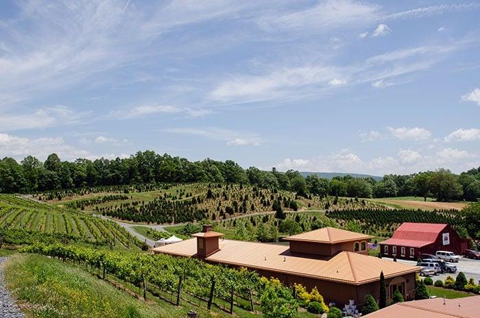 Linville Falls Winery Newland NC Image