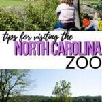 NC Zoo Pinterest Image 4