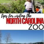 NC Zoo Pinterest Image 5