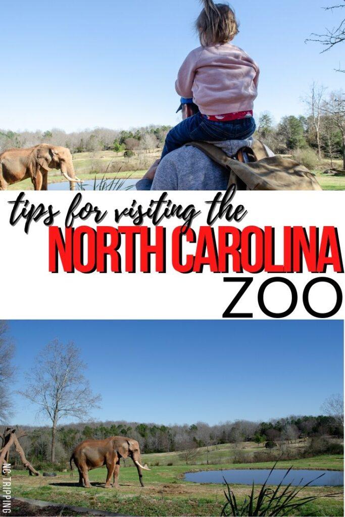 NC Zoo Pinterest Image 6