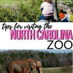 NC Zoo Pinterest Image 8