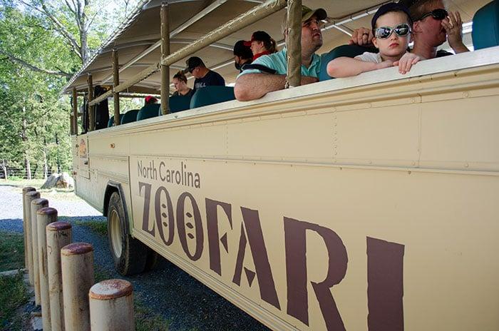 NC Zoofari Image
