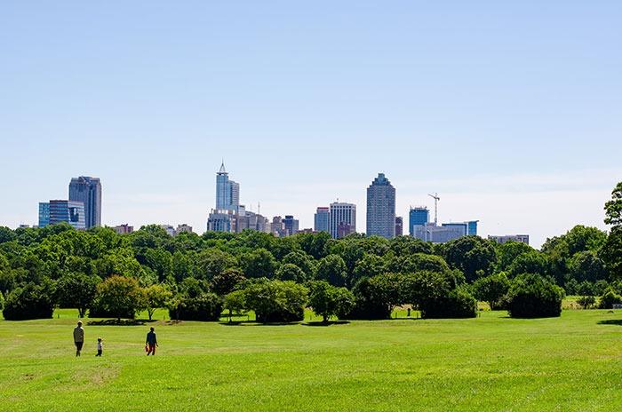 Raleigh NC Dorothea Dix Park Skyline Image