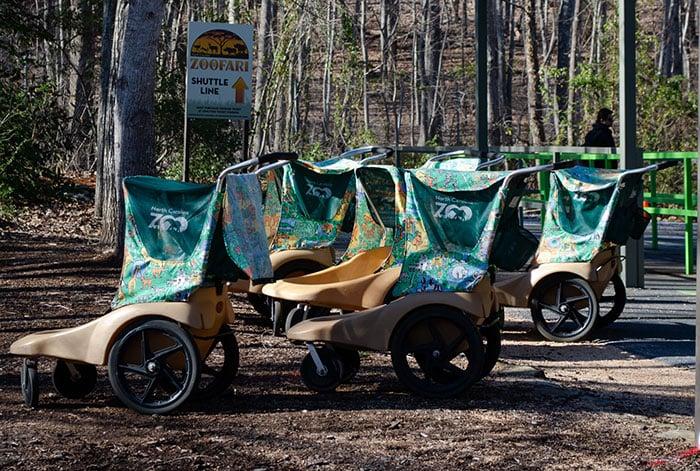 Rental Strollers Asheboro NC Zoo Image