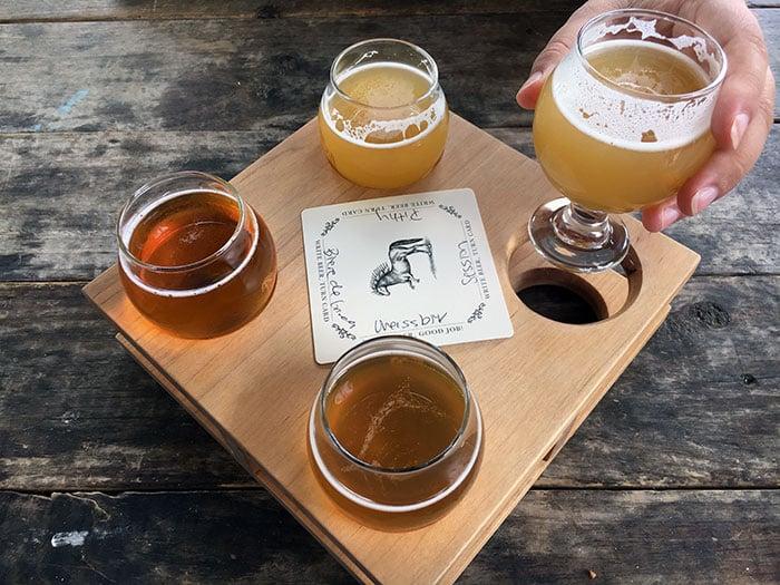 Breweries in Durham NC Ponysaurus Flight Image
