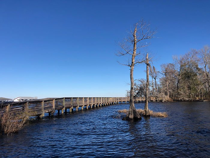 North Carolina Road Trips Lake Waccamaw Dam Boardwalk