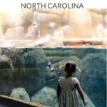 CLT Day Trips Pinterest Image 3