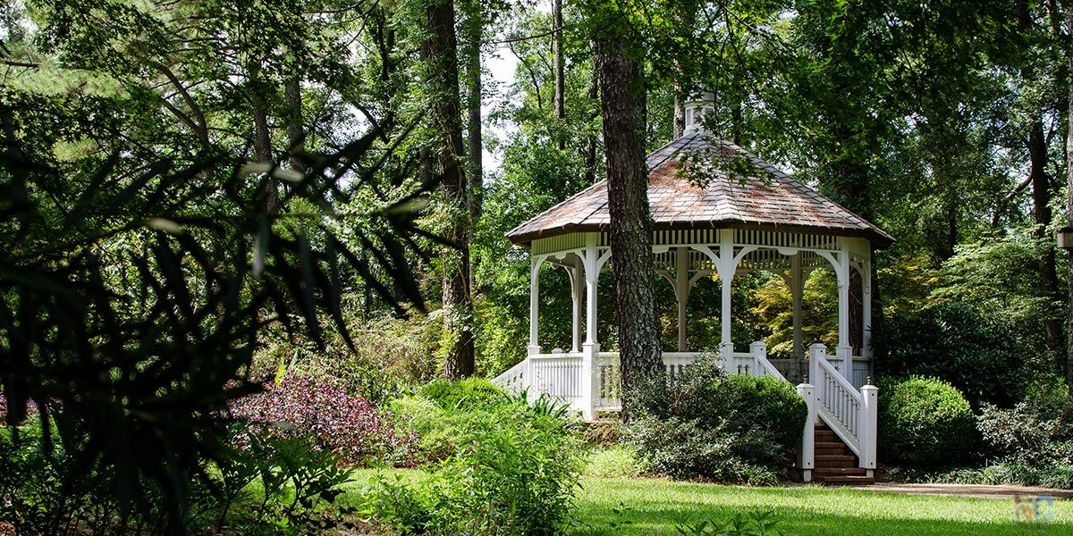 Cape Fear Botanical Garden In Fayetteville Nc 7 Things That We Love