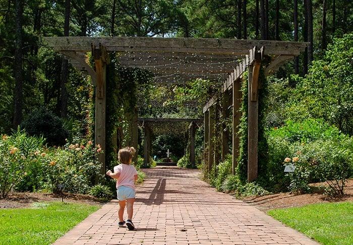 Fayetteville North Carolina Botanical Garden Image