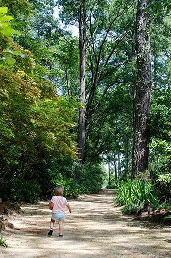 North Carolina Botanical Gardens Fayetteville Image