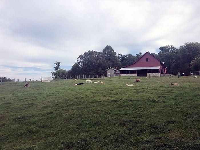Carl Sandburg Home Barn near Asheville NC