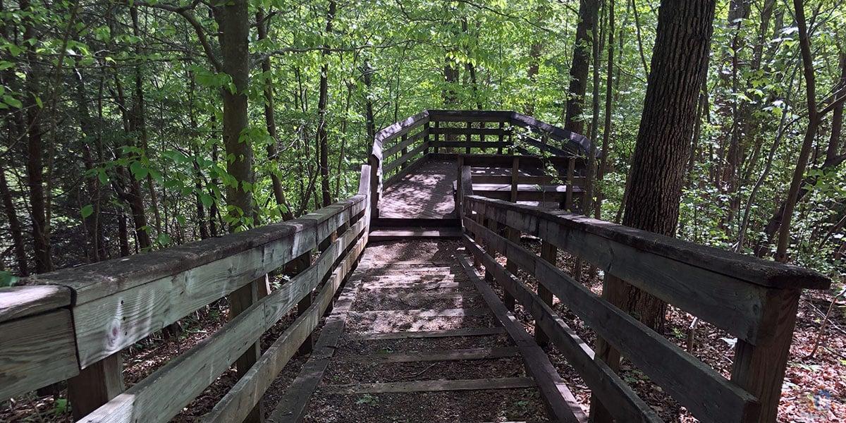 Hemlock Bluffs Nature Preserve Cary North Carolina