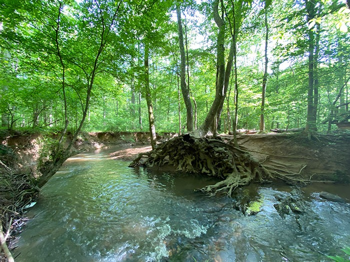 Johnsons Mill Nature Preserve