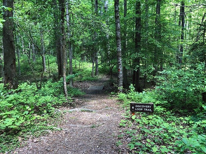 Medoc Mountain State Park Discovery Loop Trail
