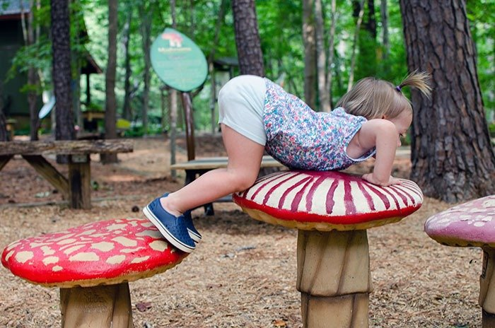 Our Daughter loves the Children's Nature Park Playground at Hemlock Bluffs Nature Preserve