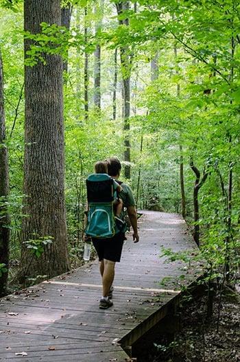 Swift Creek Loop Trail Hemlcok Bluffs Nature Preserve