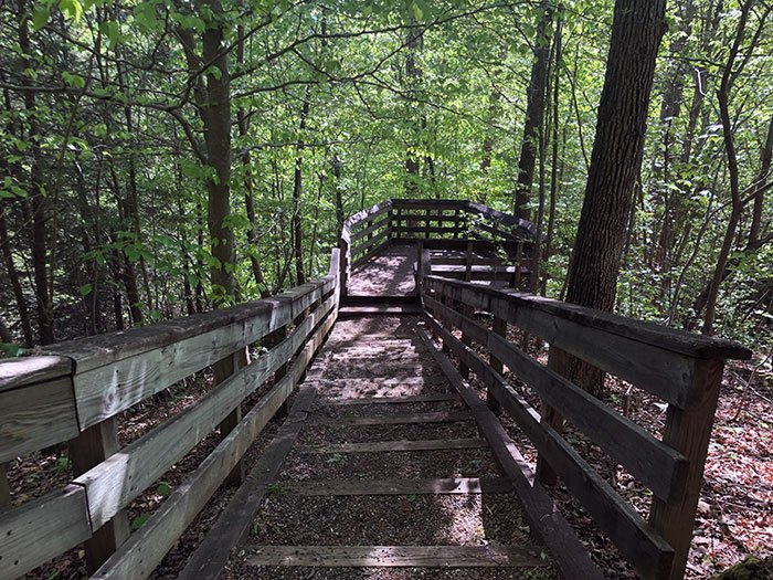 Overlooks are just a part of the fun at Hemlock Bluffs Nature Preserve